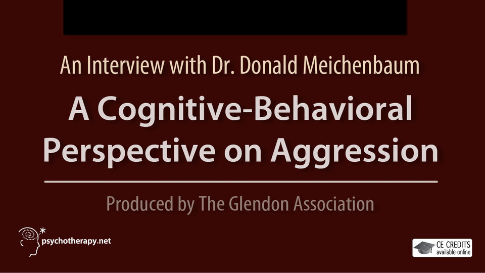 A Cognitive Behavioral Perspective on Aggression