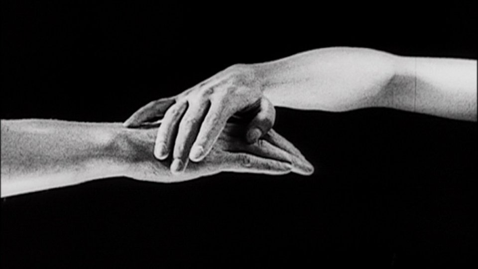 Hands: The Life and Loves of the Gentler Sex