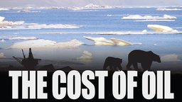The Cost of Oil