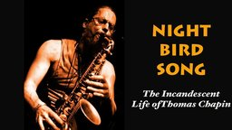 Night Bird Song - The Incandescent Life of Musician Thomas Chapin