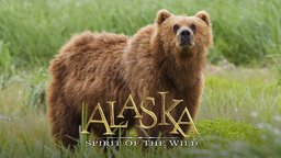 Alaska: Spirit of the Wild - Exploring the Alaskan Wilderness